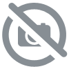 sachet 20 Caramels Fudge fondants